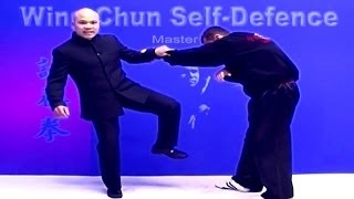 Wing Chun kung fu - Self defence Lesson 1