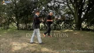 OKM Gold Metal detector Ground Navigator | user video