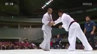 Djema Belkhodja (France) Vs Saeid Fadakari (iran) /11th World Kyokushin Championship_Japan2015