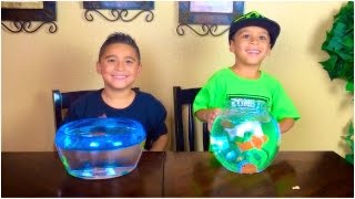 OUR NEW PET FISH!! (Robo fish vs. Lil Fishy)