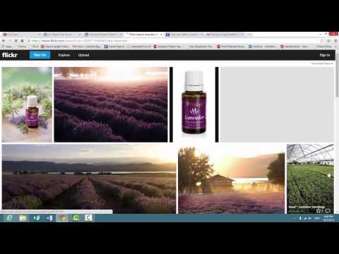 Search Young Living flickr stream
