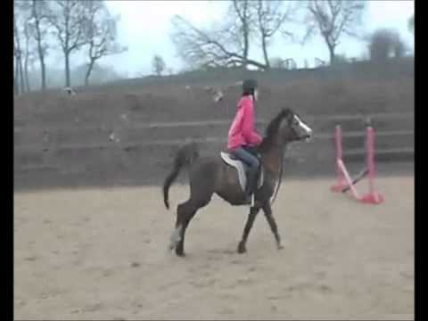 lesson at hayfield, 24/03/12!just a dream♥