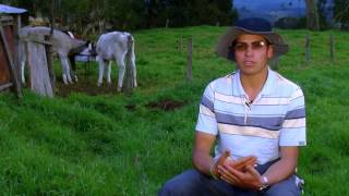 How to silage Oat Forage- TvAgro por Juan Gonzalo Angel