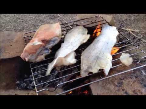 Processing and Cooking Catfish Outdoors