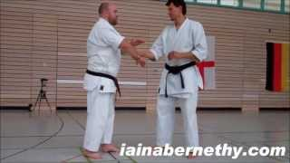 Practical Kata Bunkai: Basic Arm-Lock Flow Drill