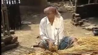 রফিকুল মজিবার