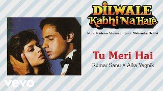 Official Audio Song | Dilwale Kabhi Na Hare | Kumar Sanu |Alka Yagnik| Nadeem Shravan
