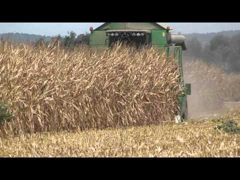 NUEVO Cabezal de maíz MORESIL MR700.