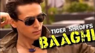 2016 New Bollywood Hindi Movie Baaghi (Action)
