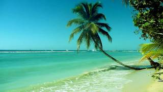 Calming Ocean Waves (Tobago)