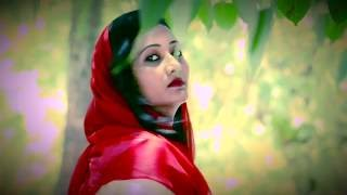 Rootha kyun /1920 London /Video Song/ Mohit chauhan- Payal dev / Mayur Dekate / Varsha Sharma