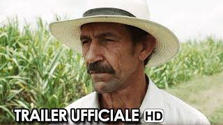 Un mondo fragile Trailer Ufficiale Italiano (2015) HD