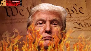 The New Trump