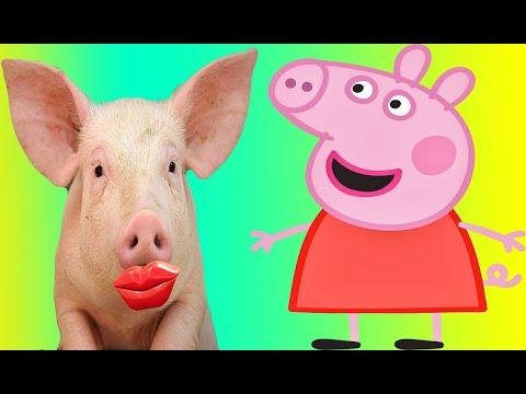 Old MacDonald Had A Farm Nursery Song.  Peppa Pig Visited Old MacDonald
