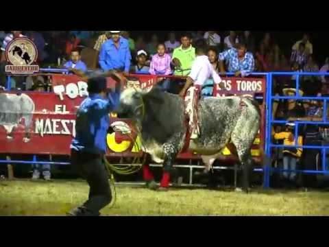 ¡¡MANO A MANO Rancho El Capire vs Rancho La Guadalupana En Pololcingo Gro 2014