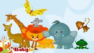 Learning Wild Animal Sounds and Names for Kids & Toddlers | BabyTV