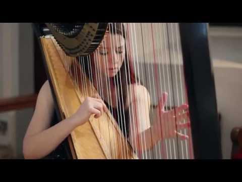Xxx Mp4 J S Bach Toccata And Fugue In D Minor BWV 565 Amy Turk Harp 3gp Sex