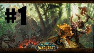 Zagrajmy w World of Warcraft #1 - Tworzenie postaci i podstawy