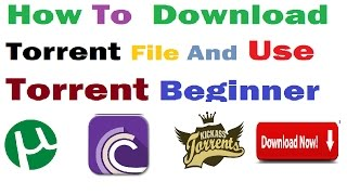 How To Download Torrent And Use For Beginner