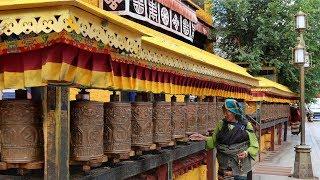 True religious freedom in today's Tibet