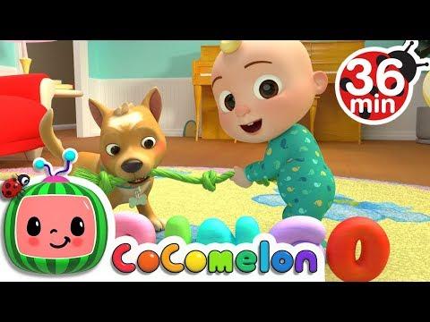 Bingo | +More Nursery Rhymes & Kids Songs - Cocomelon (ABCkidTV)