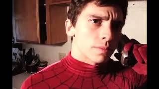 Peter's Web fart 4