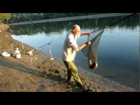 рыбалка на дністрі відео