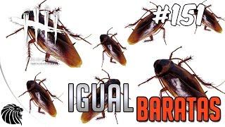 DEAD BY DAYLIGHT - IGUAL BARATAS #151