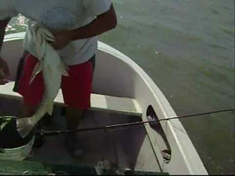 Pescando con el Yumpa