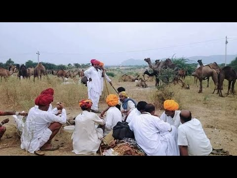 Xxx Mp4 मारवाड़ी असली देशी भजन 2017 Desi Bhajan Rajasthani Desi Bhajan मारवाडी विडियो राजस्थानी विडीयो 3gp Sex