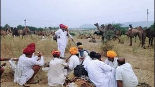 मारवाडी वीडियो भजन 2017 | desi bhajan | Rajasthani desi bhajan | मारवाडी विडियो | राजस्थानी विडीयो