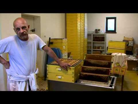 Tradycje Pszczelarstwa Gołdapskiego