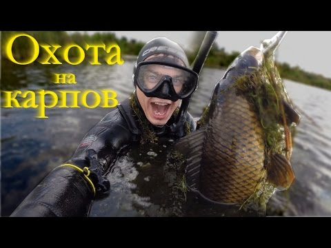 подводная охота видео 2016 новинки видео челябинск на сазана