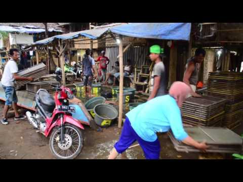 A Mini Documentary : Sepenggal Kisah dari Pinggir Cisadane