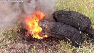 IPHONE 6 vs 5000 SNAKE FIREWORKS - BURNING EXPERIMENT