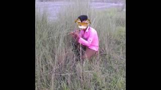 গোপাল ভাড় কাটুন 2016 bangla