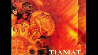 Tiamat - 02 - Whatever That Hurts
