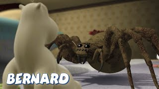 Bernard Bear | The Moth AND MORE | 30 min Compilation | Cartoons for Children