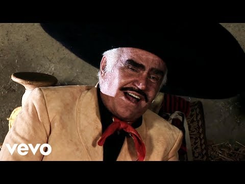 Vicente Fernández - Qué Bonito Amor