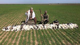 Arkansas Goose Hunt