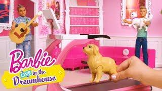Pet Peeve | Barbie LIVE! In the Dreamhouse | Barbie