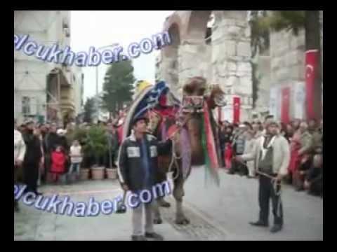 30. Selçuk Efes Deve Güreşleri En Süslü Deve Yarışması