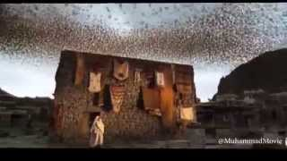 Muhammad The Messenger Of God _ ababil bird_ HD _ Majid Majidi