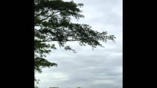 বাড়ির কাছে আড়শিনগর