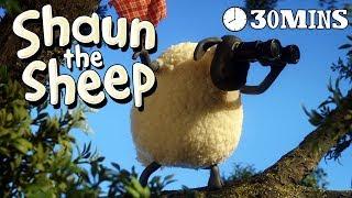 Shaun the Sheep - Season 3 - Episodes 11-15 [30 MINS]