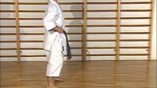 Karaté - cours 2 : positions (dachi)