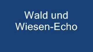 Wald und Wiesen-Echo.wmv