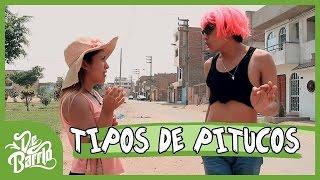 TIPOS DE PITUCOS | DeBarrio