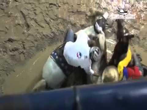 X Mundial de Coleo en Maracay 2012 1 2 3 3