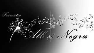 Download Formatia Alb si Negru (Laurentiu Popa) - Un trandafir creste la firida mea ( Machedoneasca )